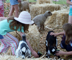 Kids love the petting zoo at the show