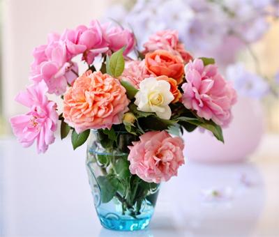 Fresh cut flowers in vase